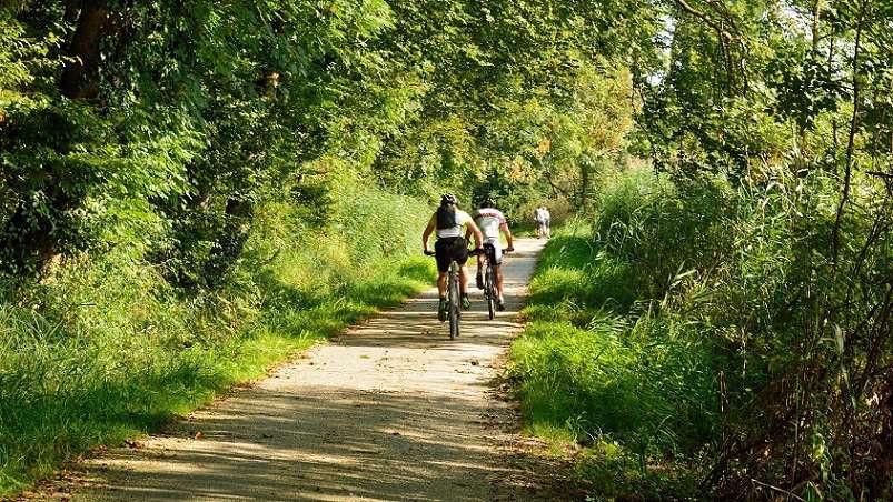 Bike tour enogastronomico dell'Alto Garda