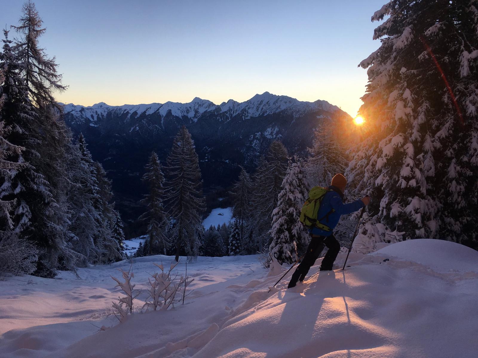 Escursione in ciaspole all'alba o al tramonto ad Andalo