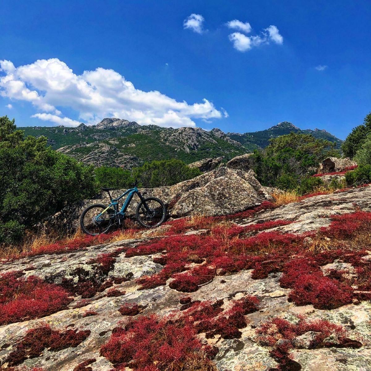 E-bike tour sulla vecchia ferrovia Monti-Calangianus