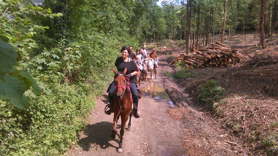 Escursione a cavallo alla Sacra di San Michele in Val di Susa (TO)