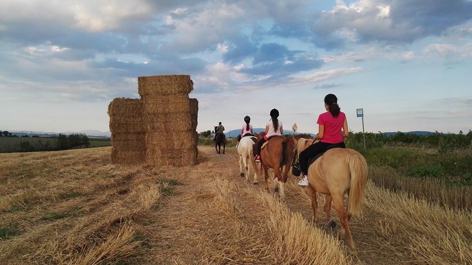 Escursione a cavallo e pranzo in agriturismo in provincia di Perugia