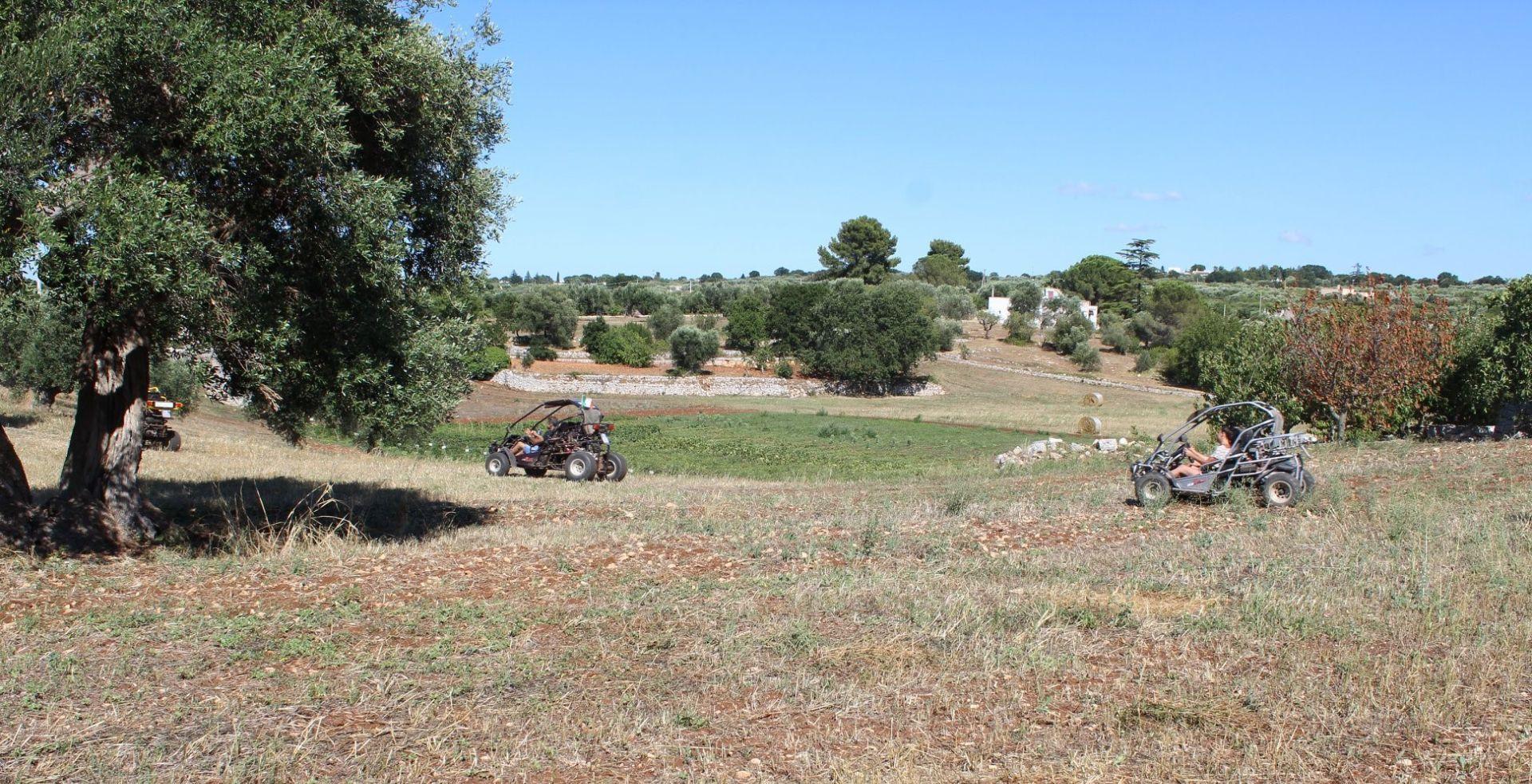 Escursione in kart cross nella Murgia Barese