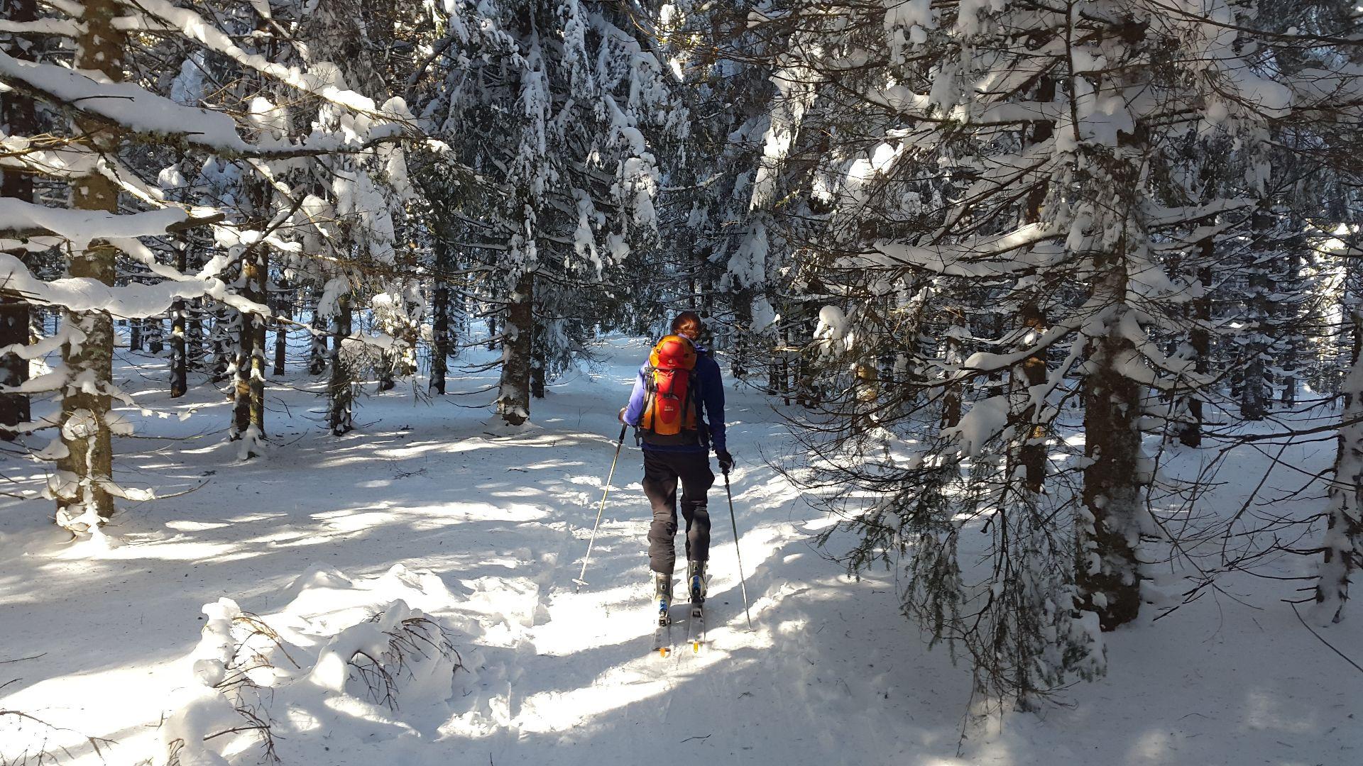 Escursione di sci alpinismo a Madesimo