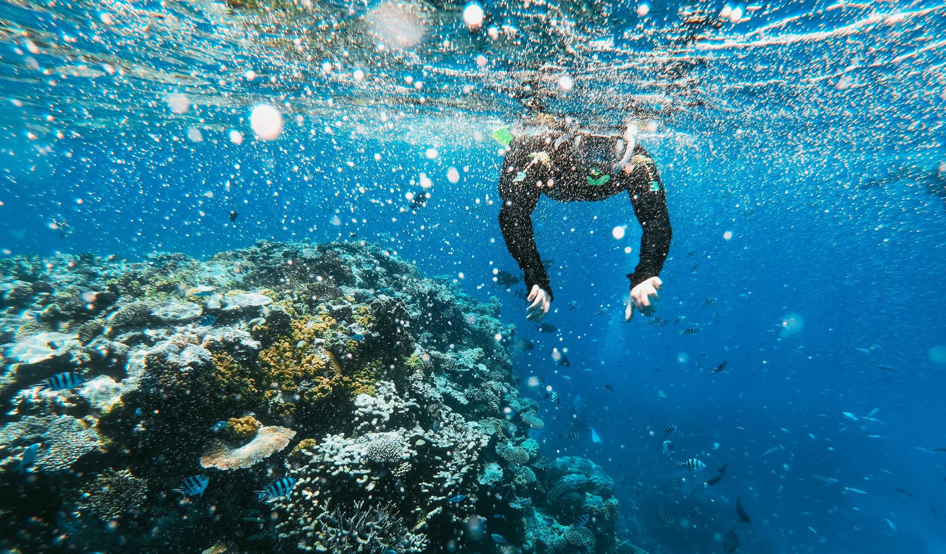 Escursione di snorkeling a Catania