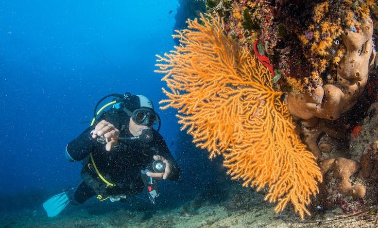 Escursione subacquea