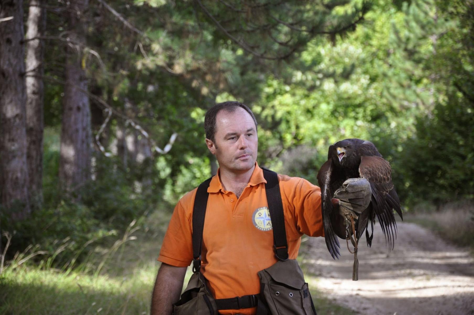 Falconiere per un giorno sui Monti Sibillini