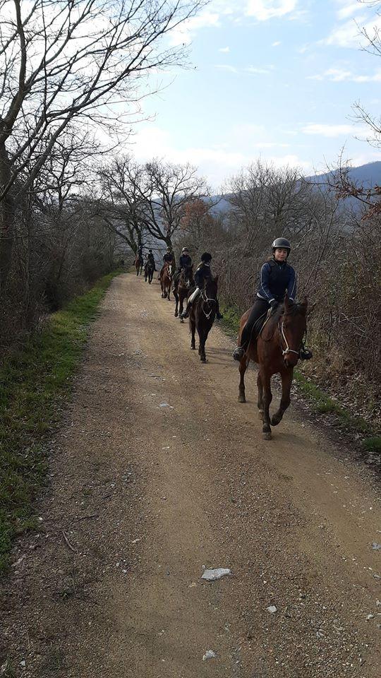 Giornata a cavallo sui colli della Maremma