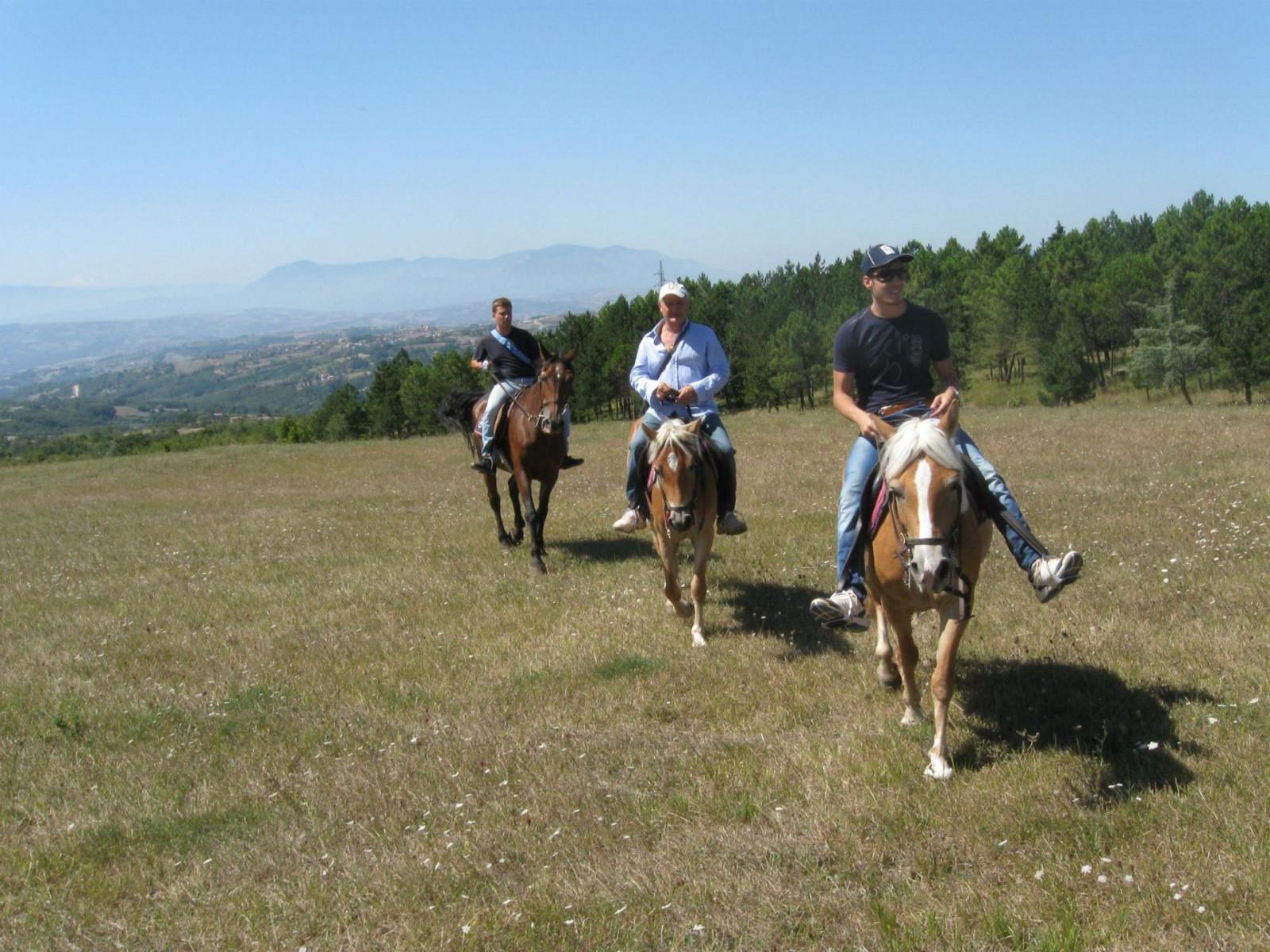 Giornata a cavallo sull'Appennino campano