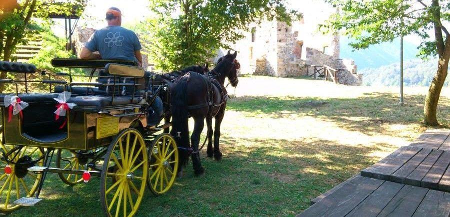 Giro in carrozza e pranzo in agriturismo in Valle Pesio