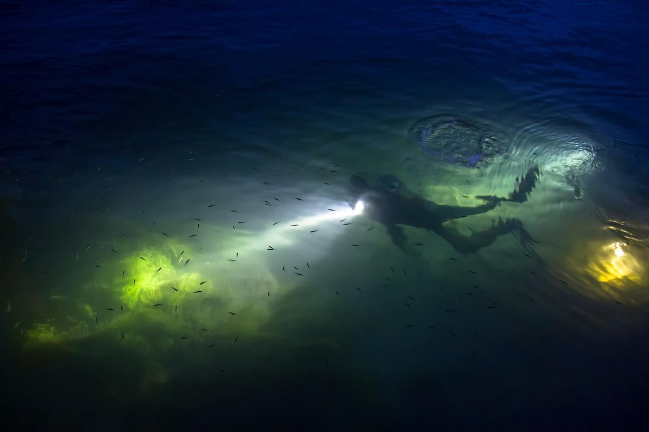 Immersione subacquea notturna a Catania