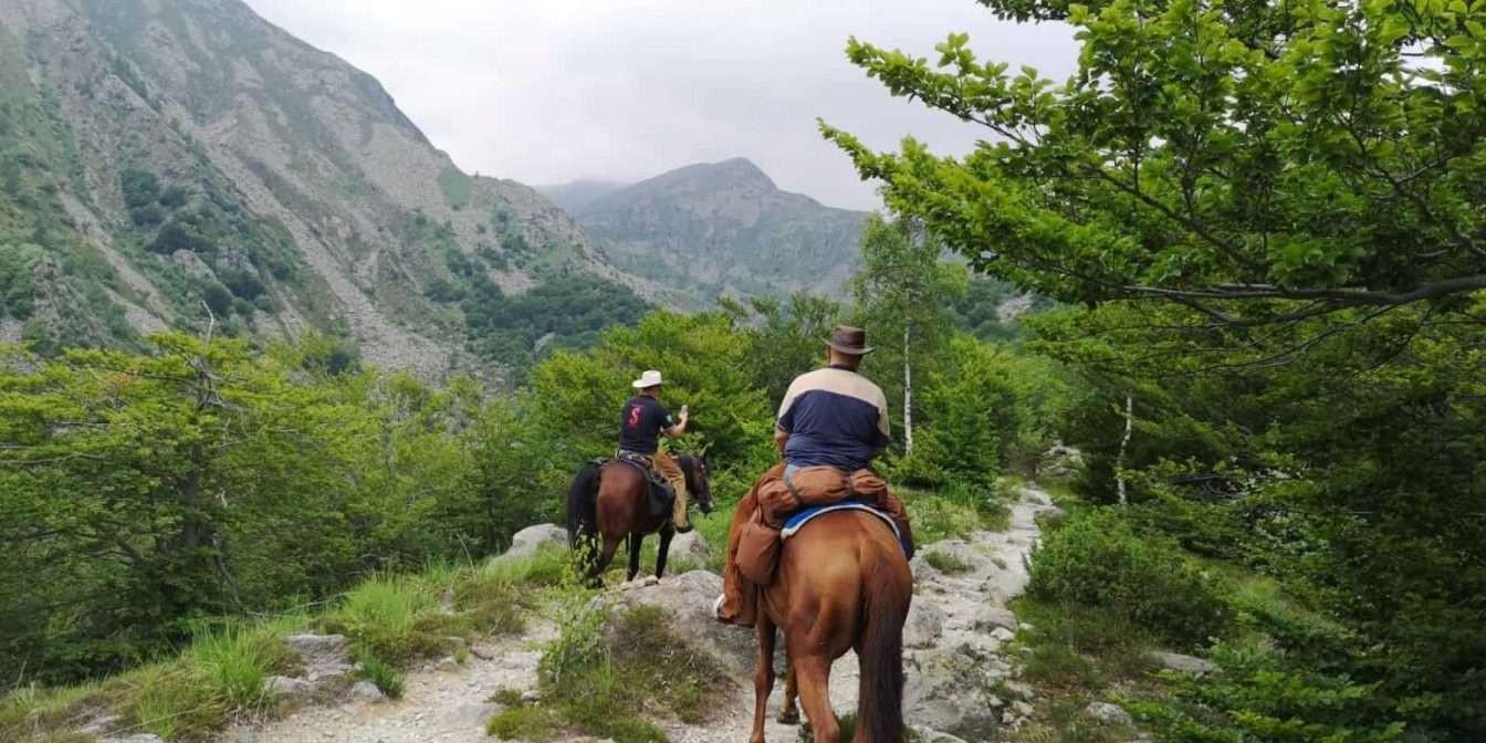 Passeggiata a Cavallo nel Parco dei Laghi di Avigliana