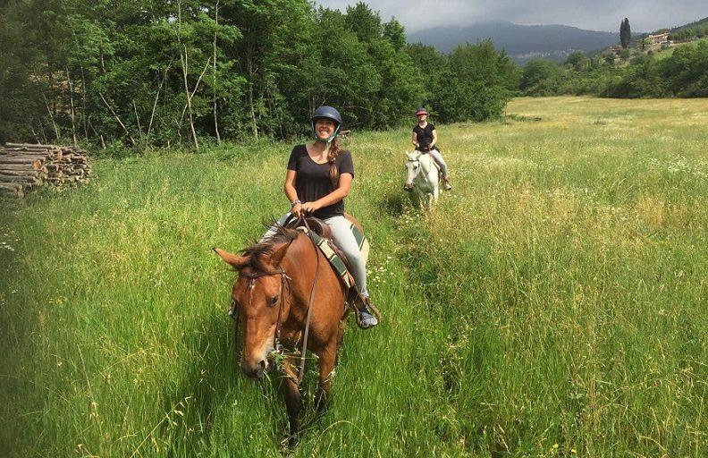 Passeggiata a cavallo sulle colline del Chianti e pranzo in agriturismo