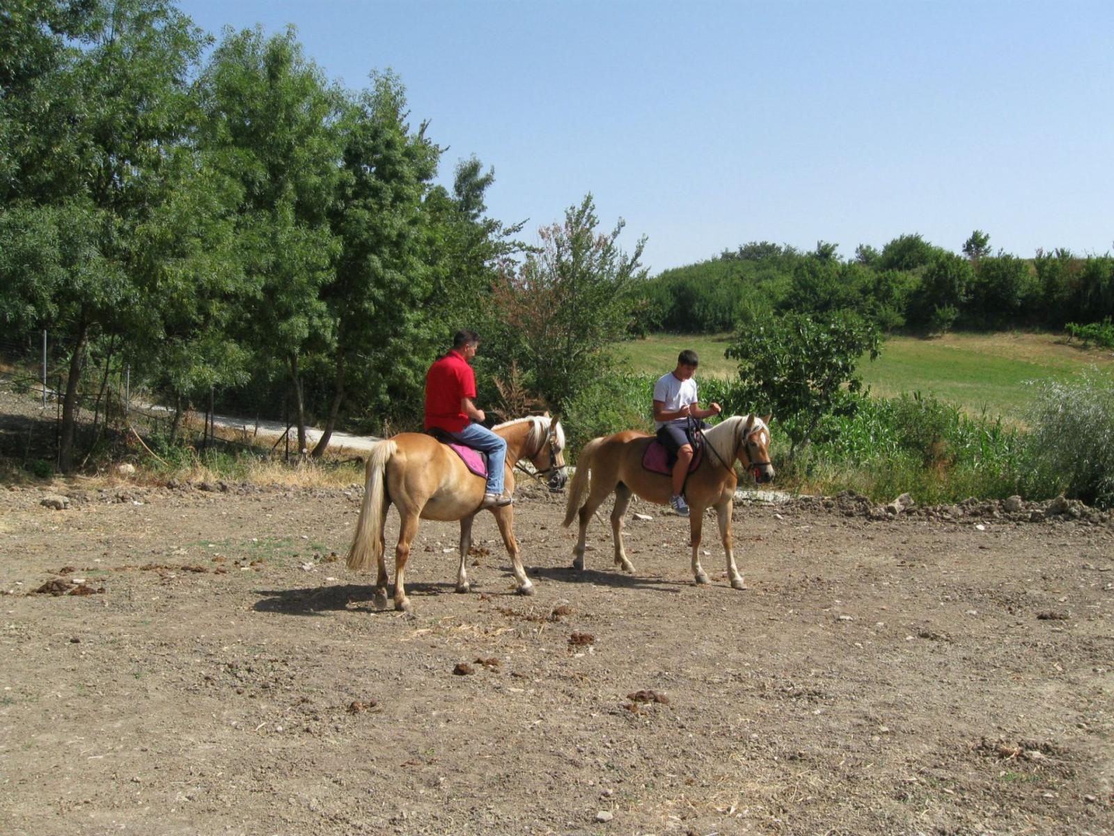 Passeggiata a cavallo sull'Appennino campano