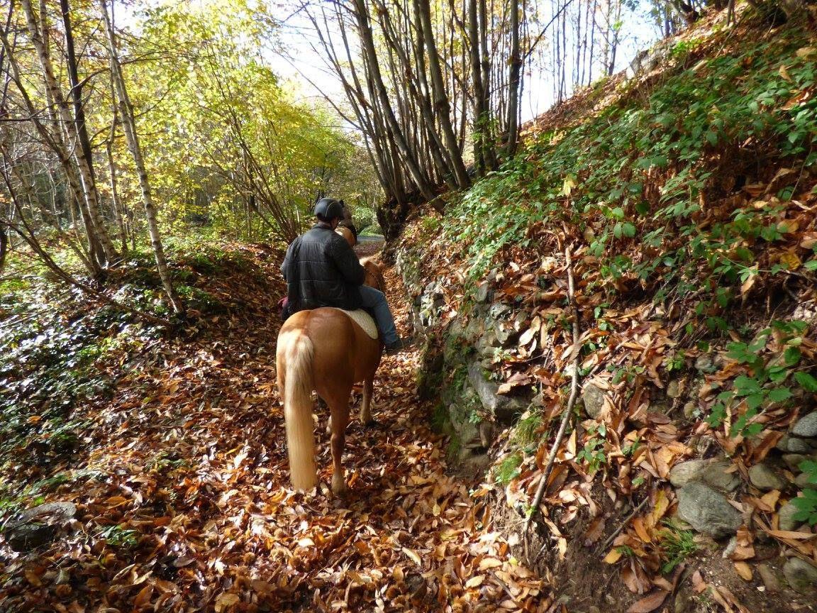 Passeggiata a cavallo in Valchiusella (TO)