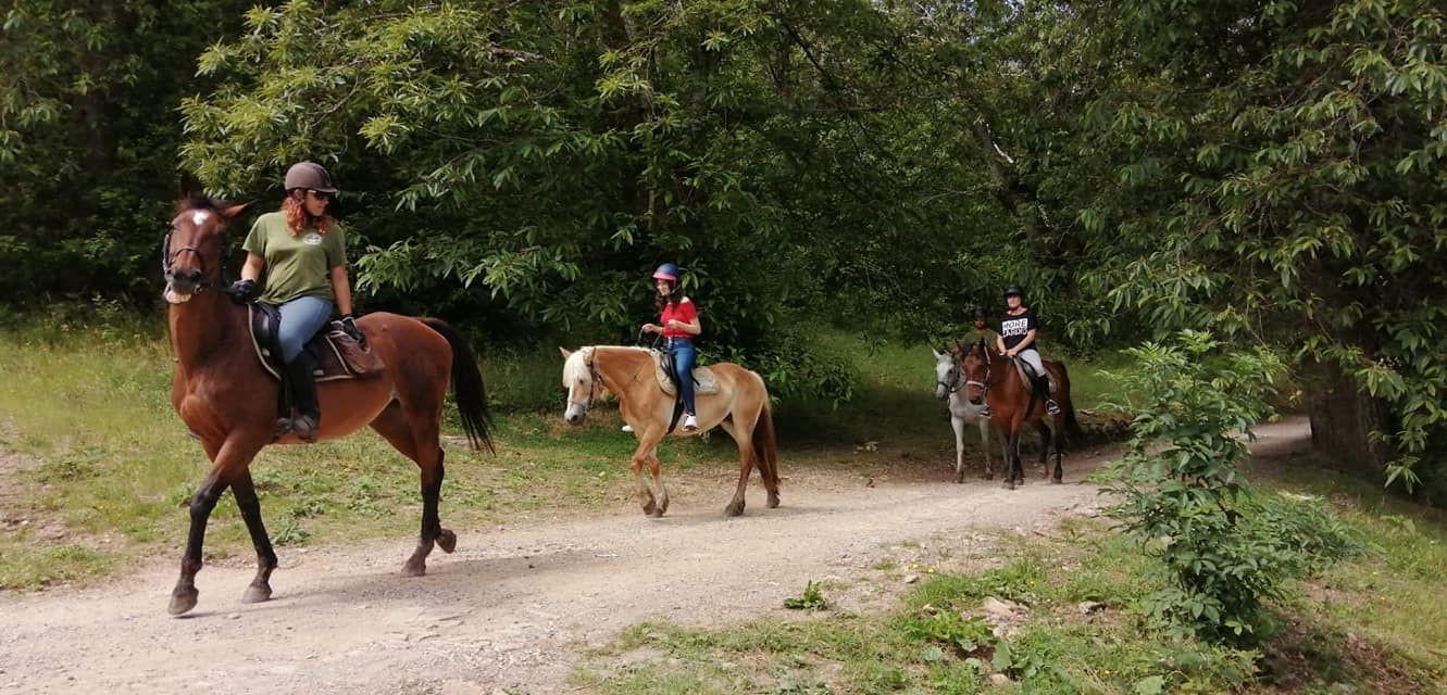 Passeggiata a cavallo e degustazione nella campagna pisana