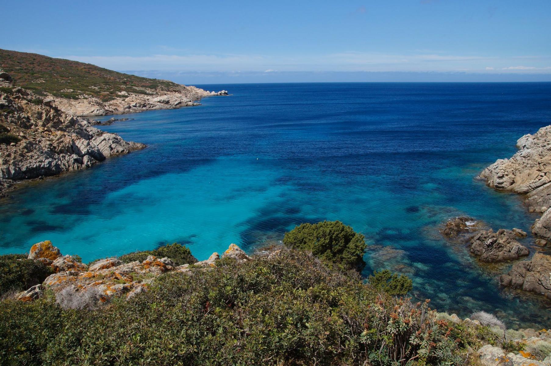 Tour in barca a vela e trekking al Parco Nazionale dell'Asinara