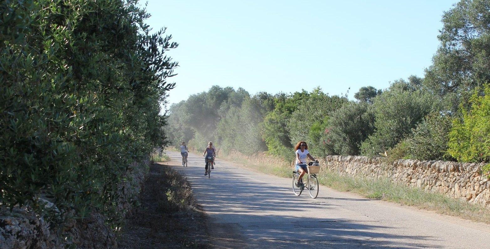 Tour in bicicletta nella Valle d'Itria