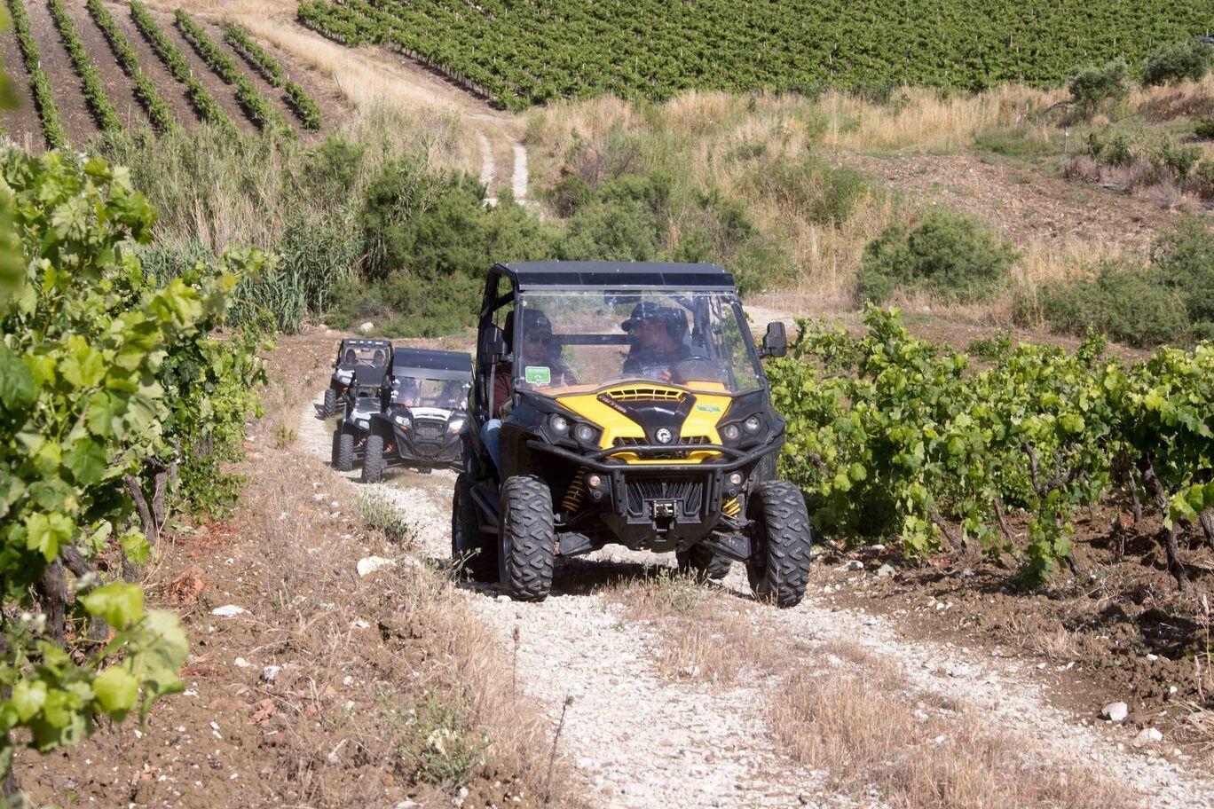 Tour in buggy 4x4 alle Polle di Crimiso a Segesta