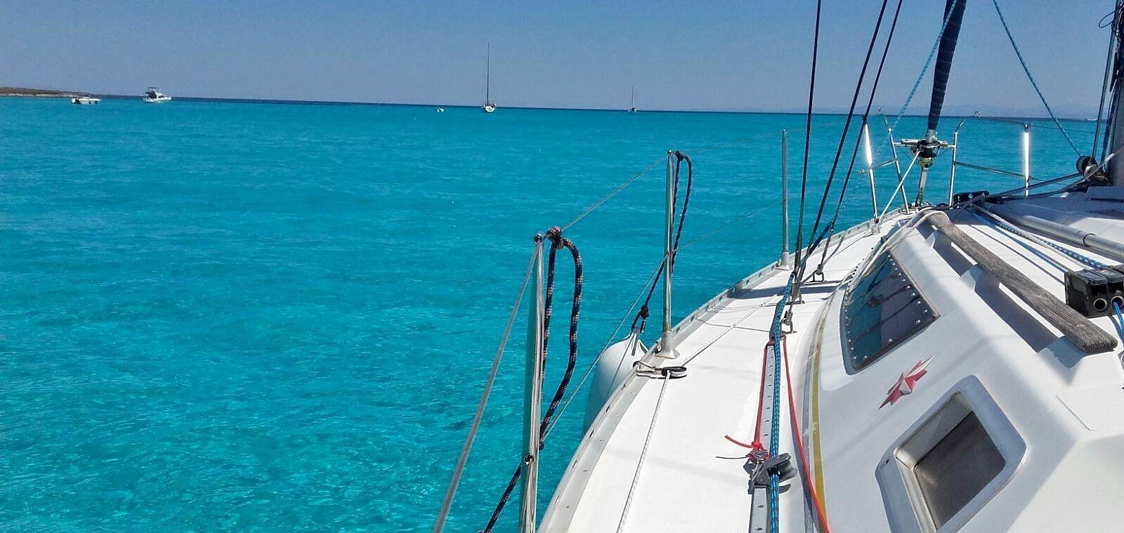 Tour di mezza giornata in barca a vela all'Asinara