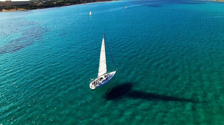 Tour privato in barca a vela al Parco Nazionale dell'Asinara
