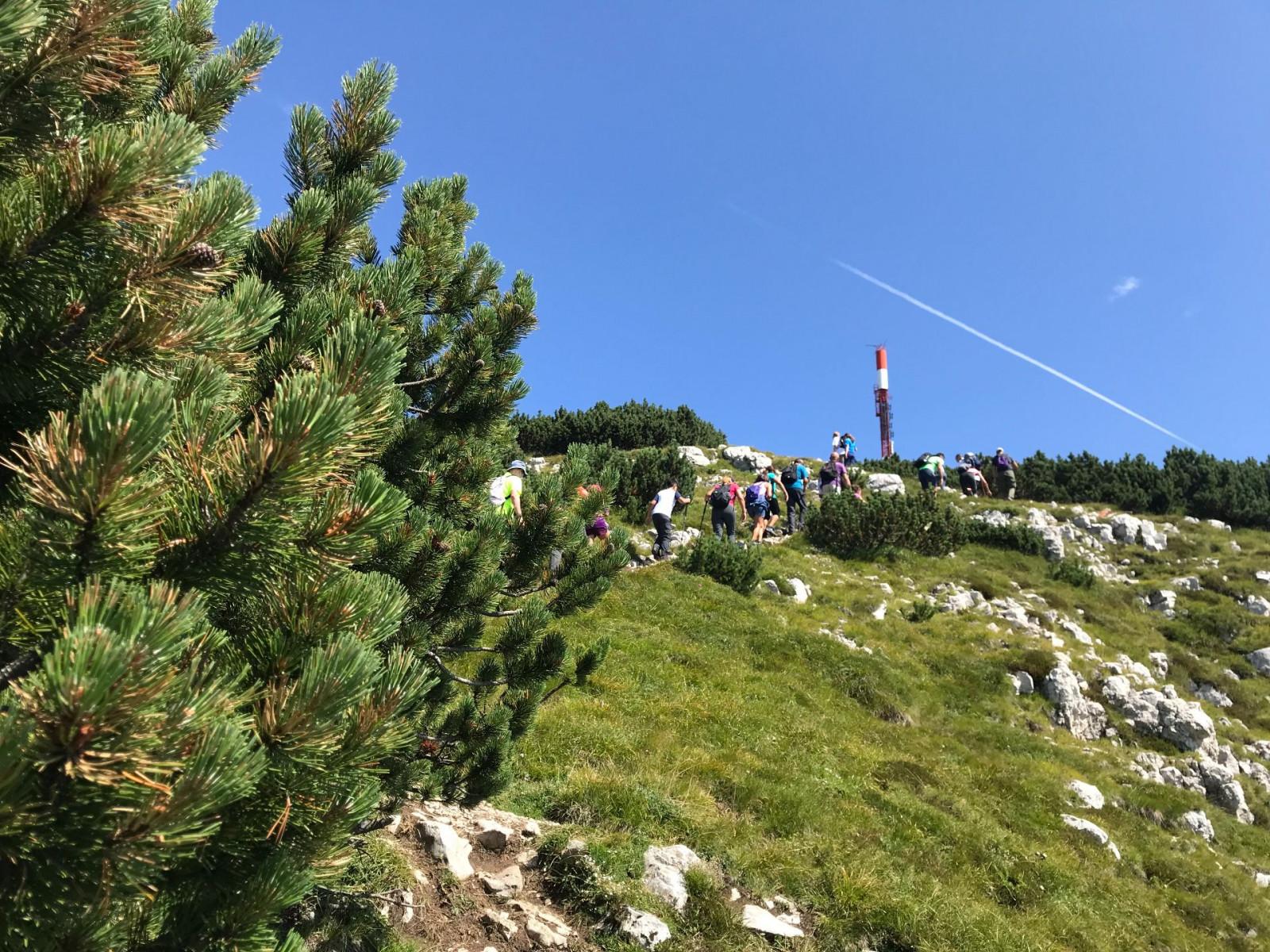 Trekking tour alla Cima Canfedin della Paganella