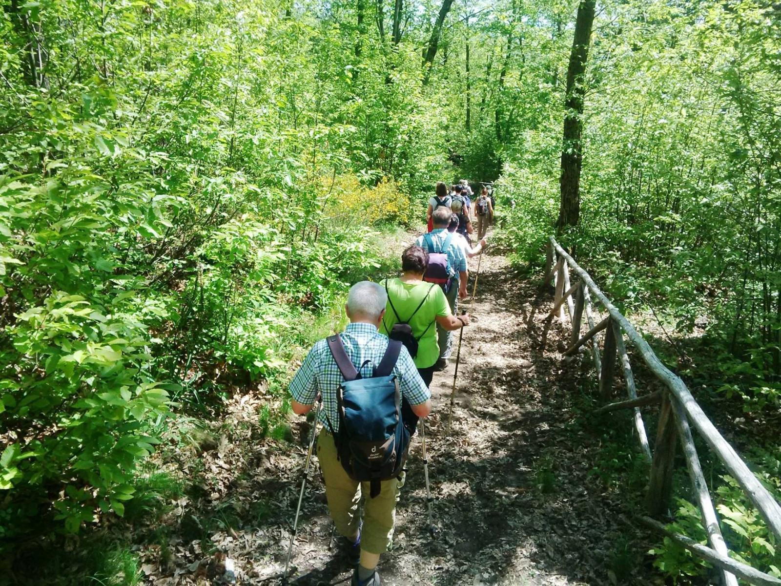 Trekking tour con degustazione sul Monte Amiata