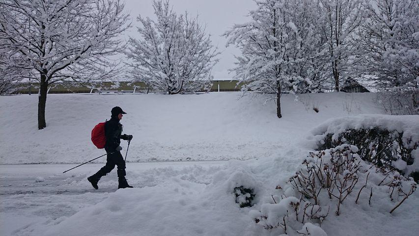Winter Nordic Walking sul Lago di Molveno