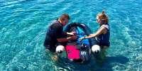 Jetsurf - prova il surf a motore sul litorale romano