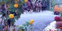 Mezza giornata a cavallo sui colli della Maremma