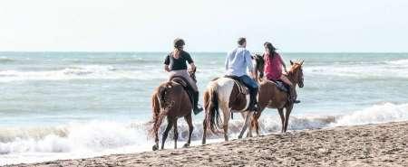Tour a cavallo a Ostia con degustazione e cavalcata in spiaggia