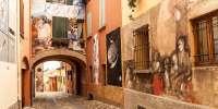 Tour privato in bici alla scoperta di Dozza e del Muro Dipinto (BO)